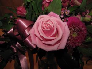 Vår lilla rosa.