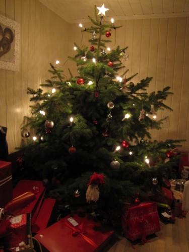 Största finaste julgranen!