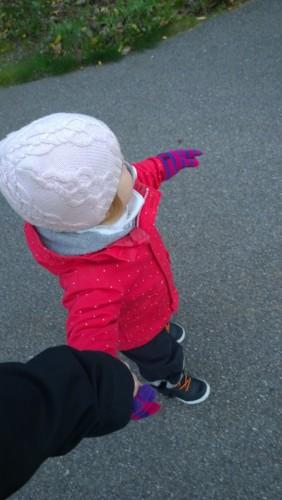 """Höstpromenad på egen fot (helst """"gå själv"""" i alla lägen)."""